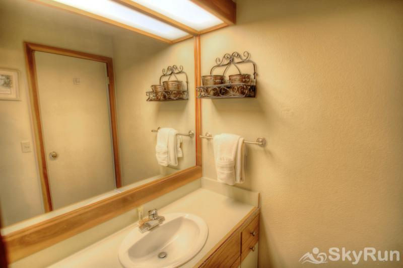 1633 Quicksilver Guest bathroom