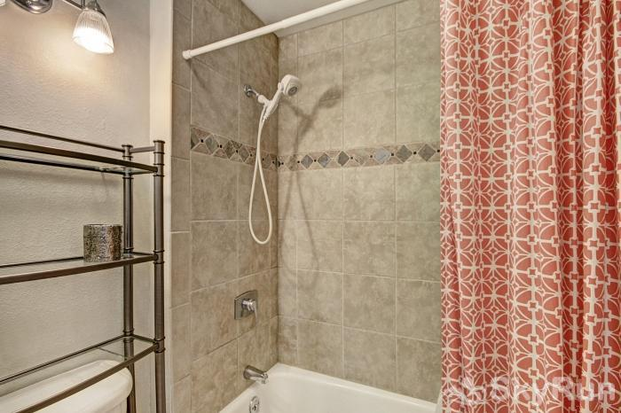 1655 Quicksilver Shower/Bathtub Combination