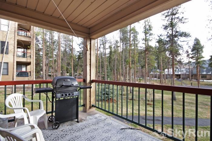 1655 Quicksilver Back Patio