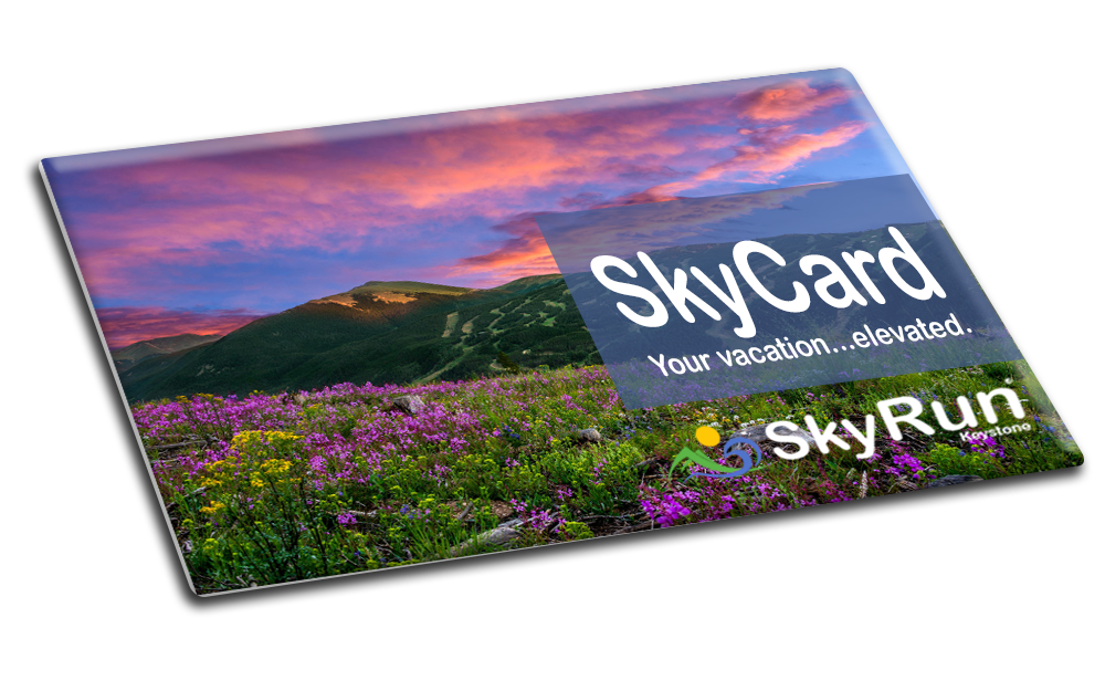 The SkyCard Program